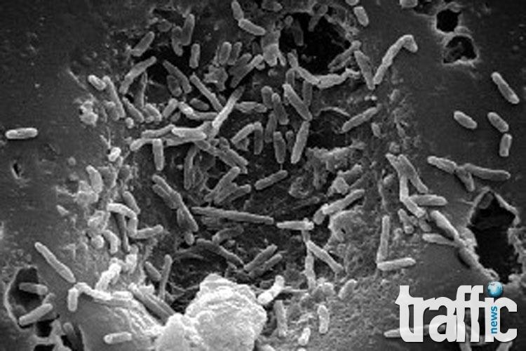 Установиха коя е най-древната болест на земята