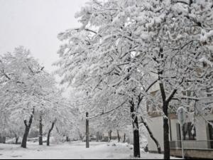14 сантиметра сняг в Белоградчик и Плевен