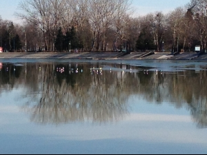 Гларуси ходят по леда на Гребната! СНИМКИ