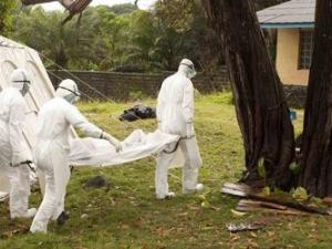 Жертвите от ебола са вече 8959