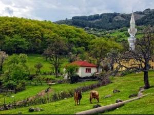 Събират наследството на Родопите в къща в Лъки