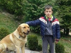 До 6 години затвор за убиеца на малкия Петьо