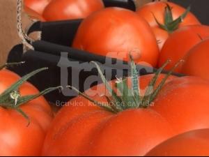 Марулите в Пловдив - 3 лева, доматите до 5! ВИДЕО