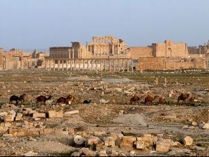 """""""Ислямска държава"""" е установила пълен контрол над Палмира"""