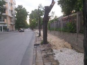 Плащаме по 284 лева за метър велоалея, с бонус разбит тротоар и изсечени дървета СНИМКИ