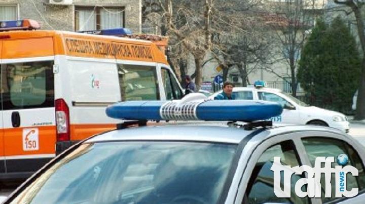 Пребиха до смърт мъж, заради кобила и малкото й в Пловдивско