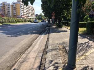 """Дани Каназирева: Велоалеята на бул. """"Мария Луиза""""  ще създаде хаос в трафика"""