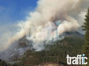 Ясна е причината за пожара край Лясково