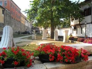 Младо вино се лее на 12 места в Пловдив, сред които и Стария град ВИДЕО