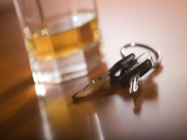 Пияни като мотики шофьори нощуваха в арестите в Пловдивско