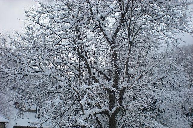 Най-студено тази нощ в Пазарджик - минус 14
