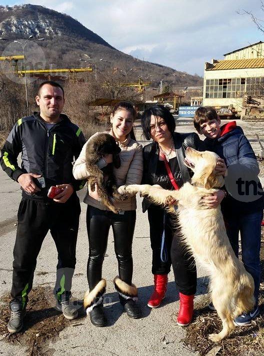Семейство приюти двете умиращи от глад и жажда кучета СНИМКИ
