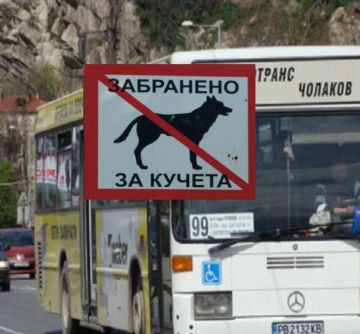 Кондуктор на автобус №99 изхвърли куче водач от автобус, било колкото куфар