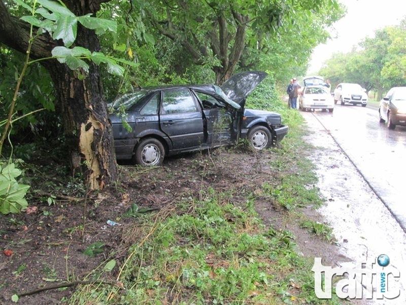 Зверски удар в дърво, мъж е загинал намясто