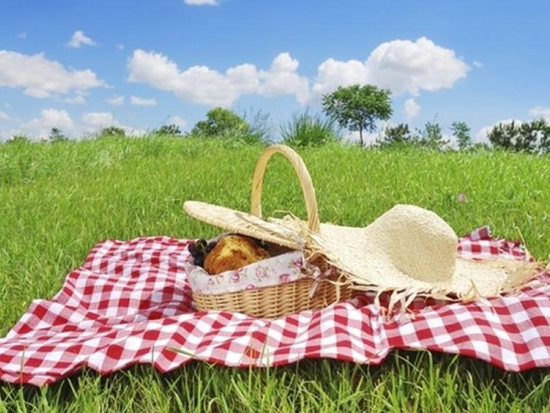 Перфектни дестинации за пикник и излет край Пловдив в юлската жега СНИМКИ