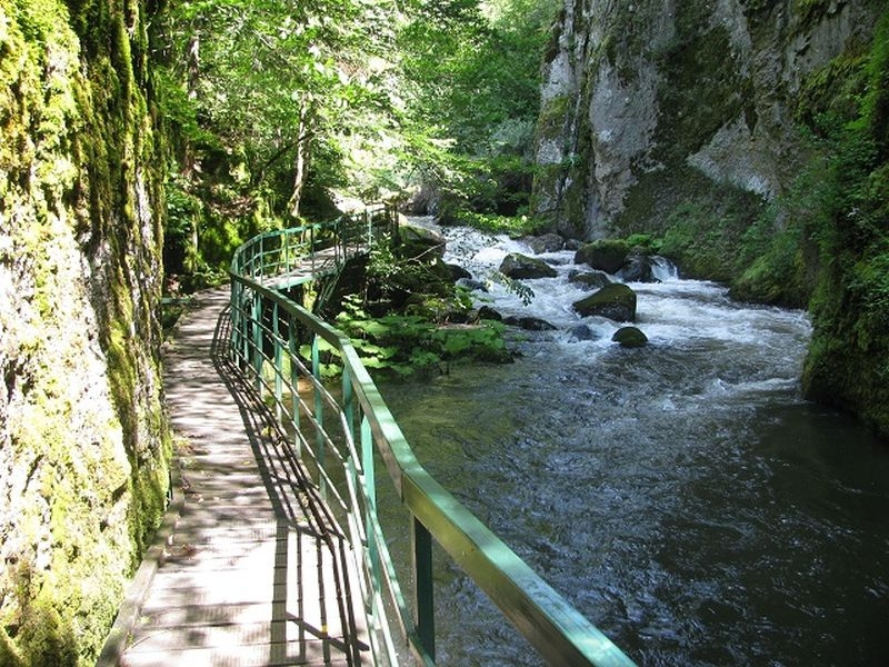 Тайнствена екопътека на час от Пловдив СНИМКИ