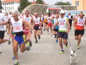 Как кучето Панчо пробяга 23 километра от Съединение до Пловдив ВИДЕО