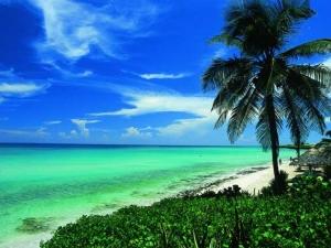 Над 800 служители получиха новогодишен бонус - почивка на Карибите