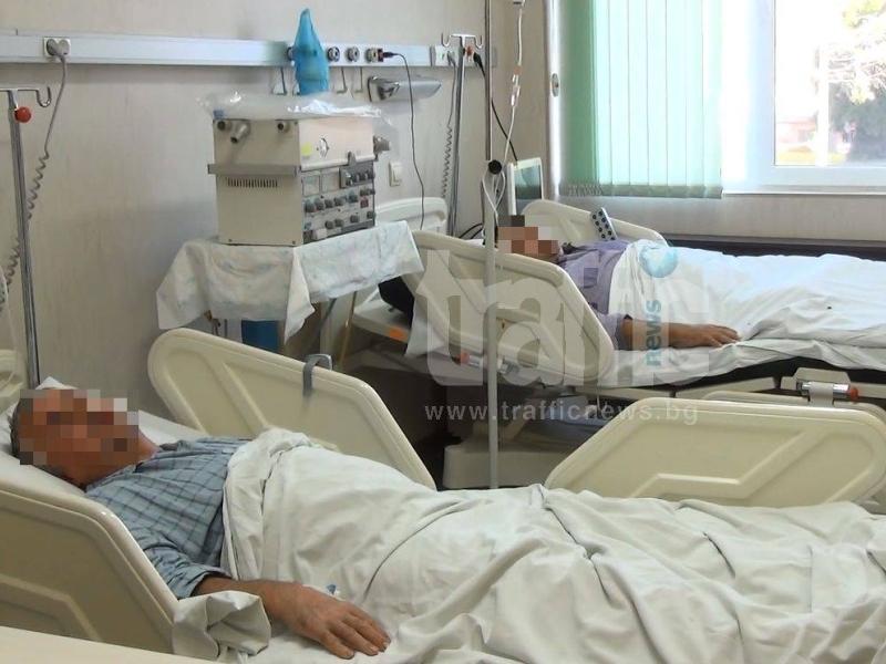 Птичият грип в Пловдив - опасен и за хората ВИДЕО