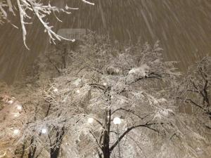 Жълт код за обилни снеговалежи в Пловдив! Очакват ни до 30 см преспи
