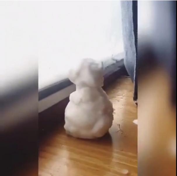 Сняг вали в първа класа на БДЖ, пътници правят снежни човеци ВИДЕО