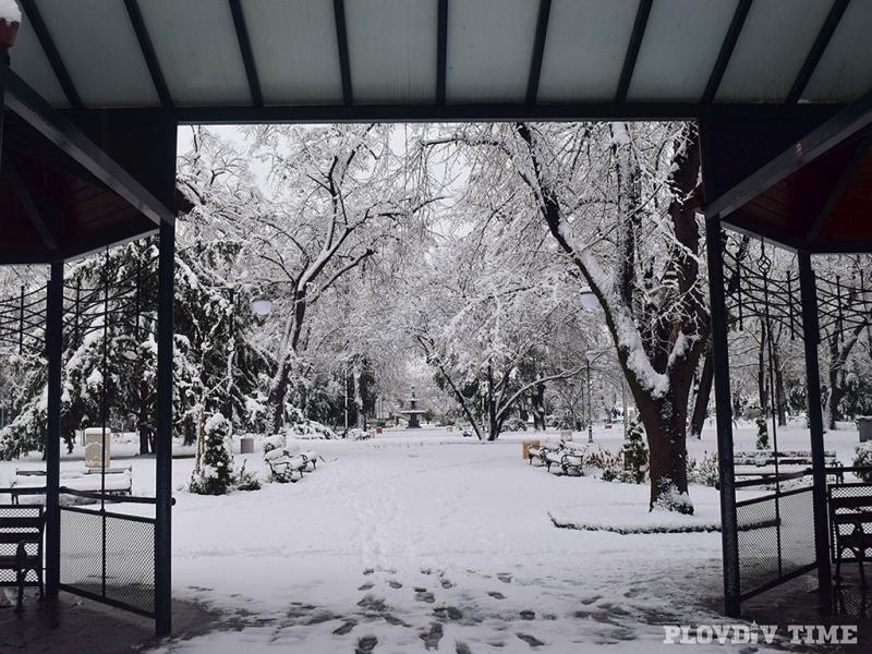 Цар-Симеоновата градина потъна в живописни преспи СНИМКИ