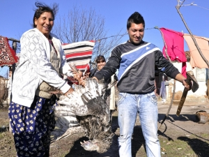 Днес е Банго Василица - ромската Нова година