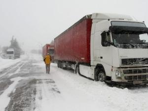 Закъсали тирове блокираха пътя Девин- Кричим