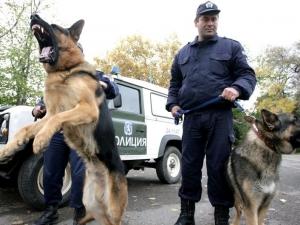 Куче откри труп на мъж край хасковско село