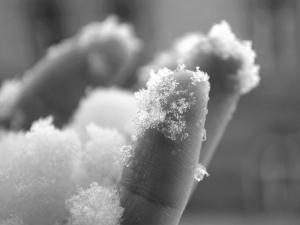Откриха трупа на измръзнал мъж в снега, паднал в преспите след запой