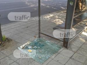 Вандалите в Пловдив са на изчезване