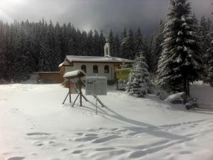 Хотелиерите в Родопите отчитат огромни загуби загуби заради студа