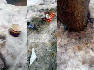 Снегът в Пловдив се превърна в сметище СНИМКИ