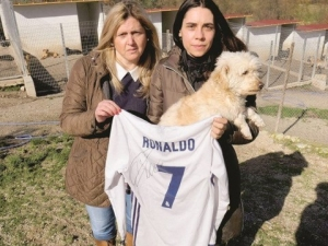 Благороден жест на Роналдо спаси 80 кучета
