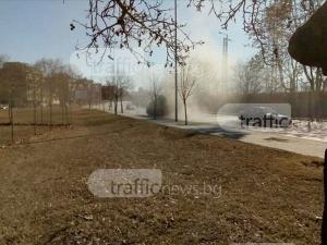 Булевард стана пустиня! Пловдивчани да тръгват на сафари СНИМКИ