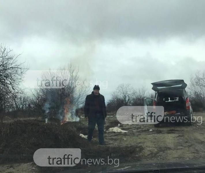 Зверство в Карлово! Мастит бизнесмен уби 4 кучета и ги запали СНИМКИ