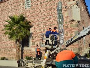 Палмите в Пловдив съблякоха зимните палта СНИМКИ