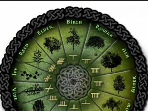 Хороскопът на келтите - той е най-точният!