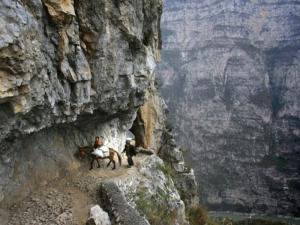 Българката, загинала в Хималаите, паднала в 100-метрова пропаст