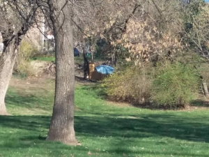 Часове след като бе прогонен, клошарят от Бунарджика пак трупа покъщнина в парка