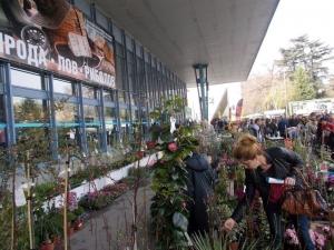 Хоби фест с много новости и атракции  в Международен панаир Пловдив