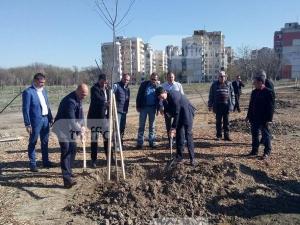 Залесяват цяла гора в Пловдив, която да се превърне в новия бял дроб на града ВИДЕО