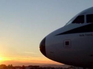 Скорпион ухапа пътник в бизнес класа на самолет