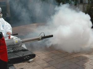 Започват да пръскат срещу комари в Пловдив