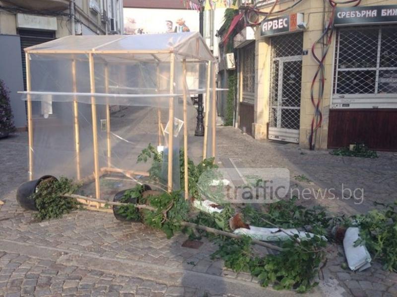 Вандали разбиха оранжерия в Капана, заляха магазин с боя СНИМКИ