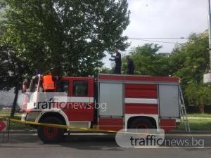 Паднали жици се заплетоха в дърветата на Цариградско! Пожарникари ги вързват СНИМКИ
