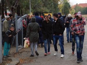 От МВР разкриха колко са мигрантите в България