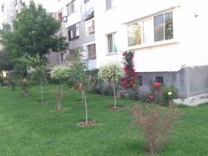 Съседи за пример! Тракийци превърнаха градинката пред блока в оазис СНИМКИ