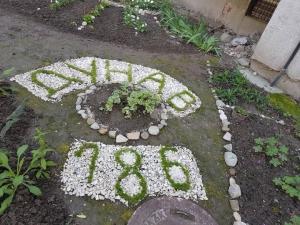 Бивша учителка от Лиляната създаде райски кът в Кършияка СНИМКИ