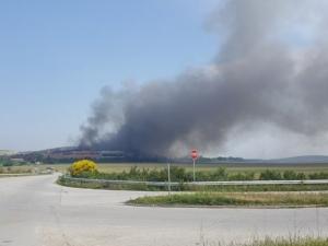 Няма превишени норми на въздуха около Шишманци след пожара